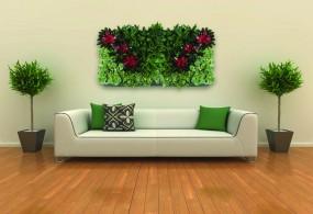 Pflanzenportrait aus Kunststoff in verschiedenen Farben und Größen