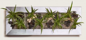 Flowerwall Pfanzenbild L 97x37x8 cm in verschiedenenen Ausführungen